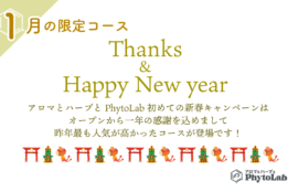 Thanks and Happy New Year